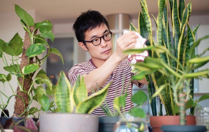 باغبانی در منزل و رسیدگی به گیاهان در فصل بهار