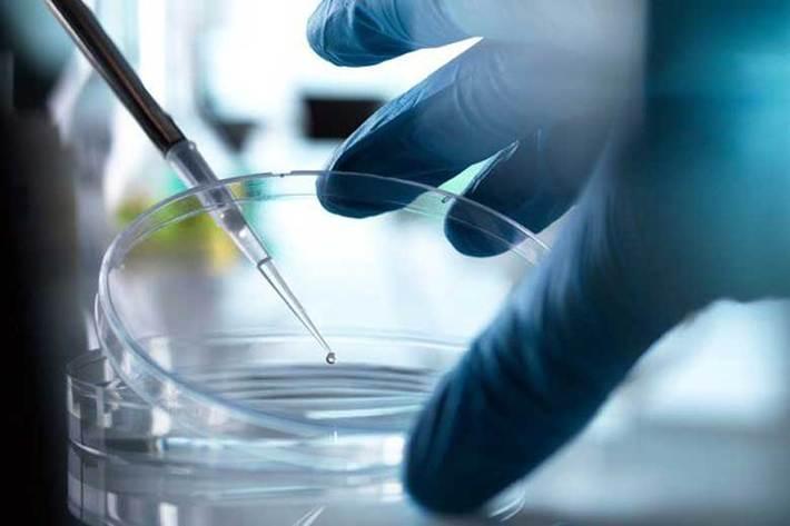 کوشش برای ساخت واکسن کرونا ، نقش سلول های مزانشیمی در درمان