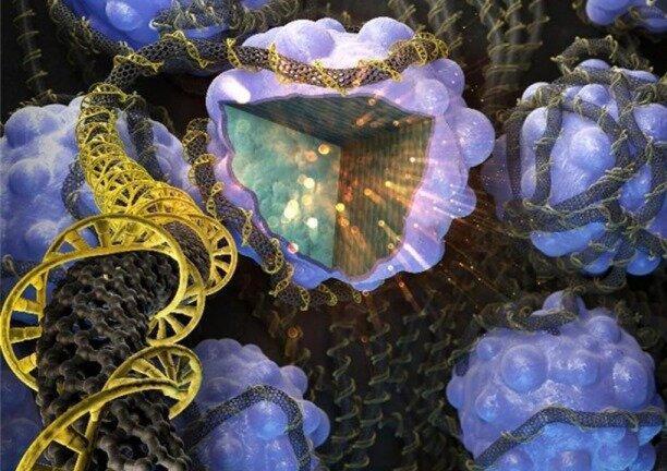 یک وسیله نانویی میزان دقیق آهن در بدن را شناسایی می نماید