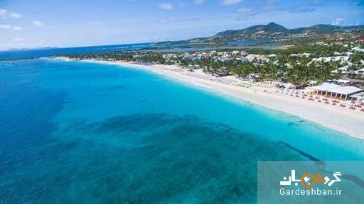 حمله مرگبار کوسه به جهانگرد زن در ساحل، عکس