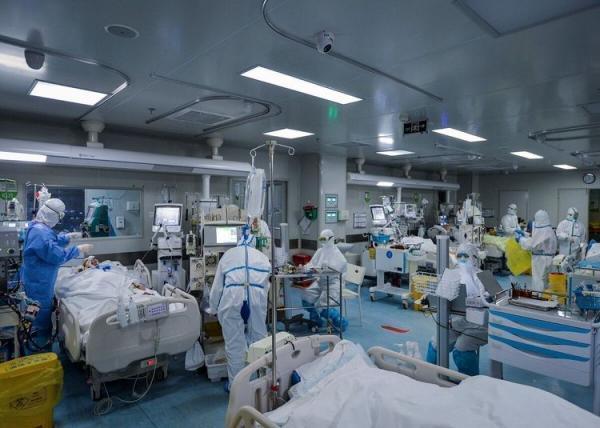 نظام پزشکی مشهد: واکسن نرسد، فاجعه انسانی رخ می دهد